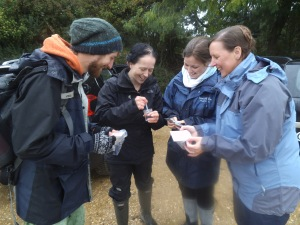 Hampshire Geographical Association teachers' day Nitrate kits